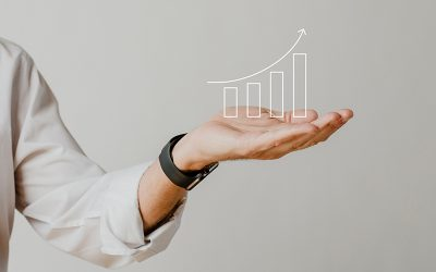 Positive List of Indonesian Investment (DPI)